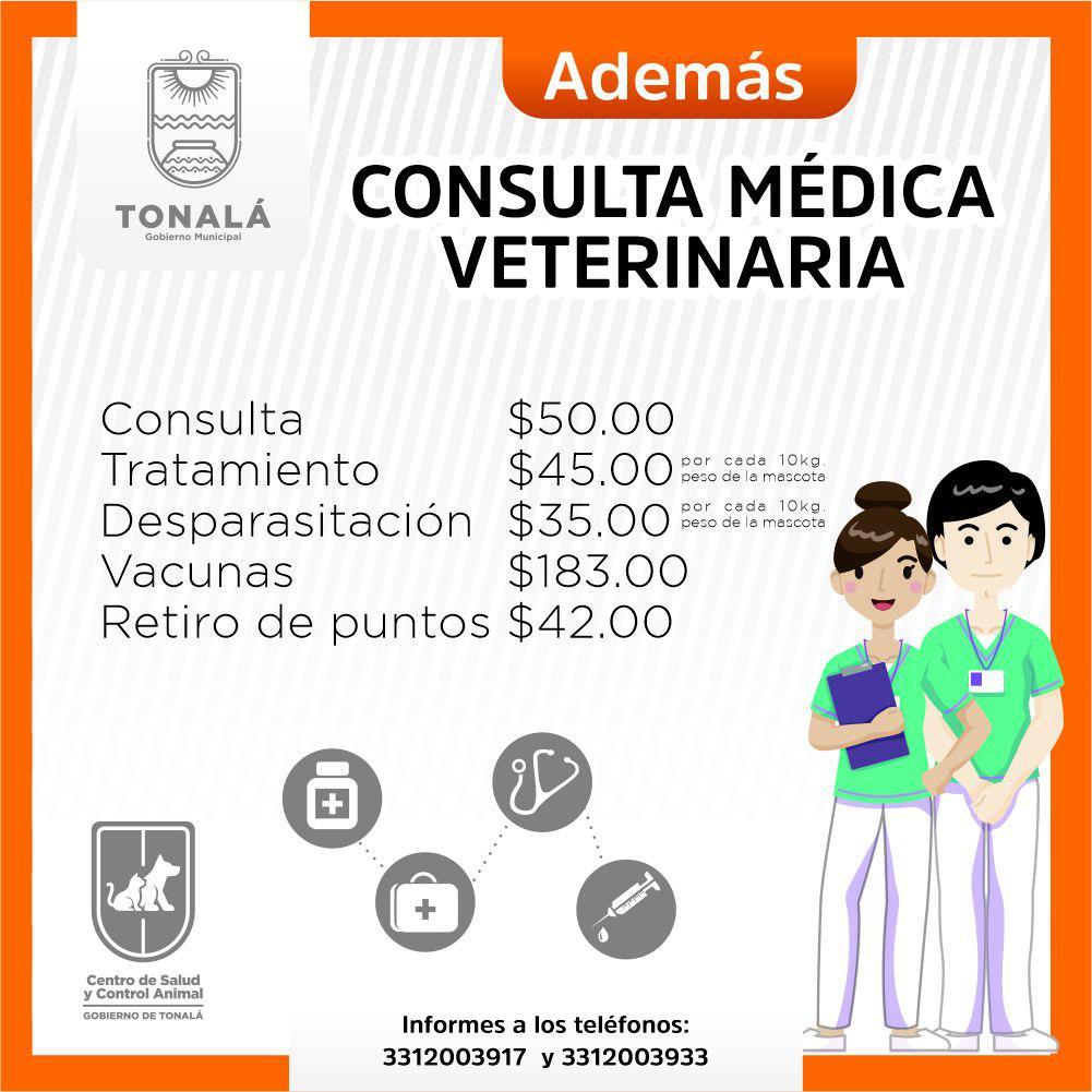 ANTIRRABICO CONSULTA MEDICA