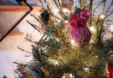 Gobierno de Tonalá tendrá campaña de recolección de pinos de navidad naturales
