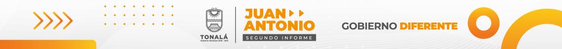 banner_informe